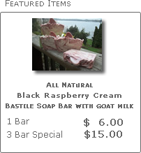 Black Raspberry Cream All Natural Soap